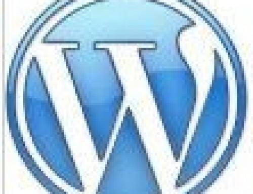 WordPress One to One Training